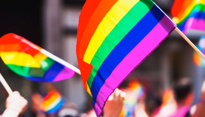 IBM LGBT+ Resources for Professionals and Employers