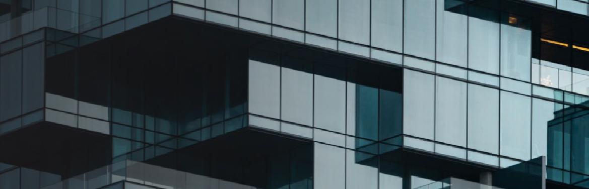 IBV platform business models