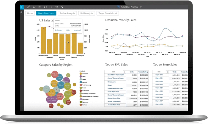 Screenshot from IBM Planning Analytics
