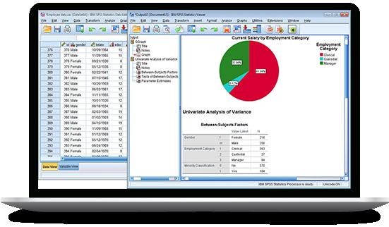 IBM SPSS Statistics screenshot